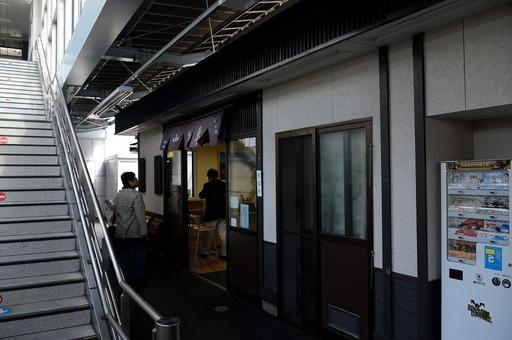 DSC_5130山野草0番ホーム.jpg