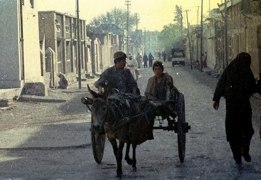アフガンK9馬車_fi.jpg